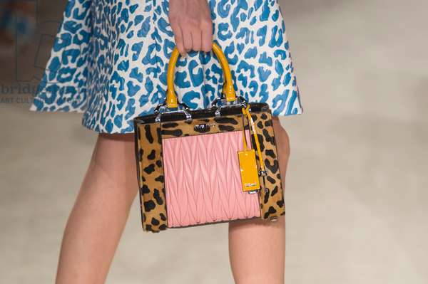 Miu Miu 2015 Fall Winter collection, May 2015 (photo)