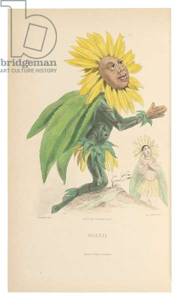 Soleil, illustration from 'Les Fleurs Animees', engraved by Charles Geoffroy (1819-82), 1867 (hand-coloured litho)