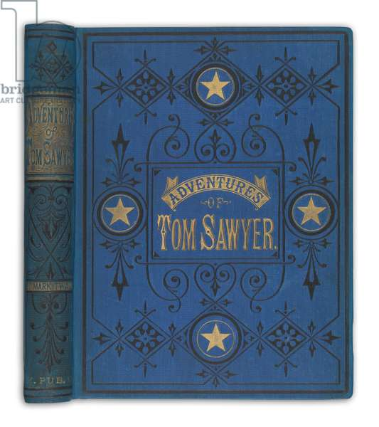'The Adventures of Tom Sawyer' by Mark Twain, The American Publishing Company, 1876