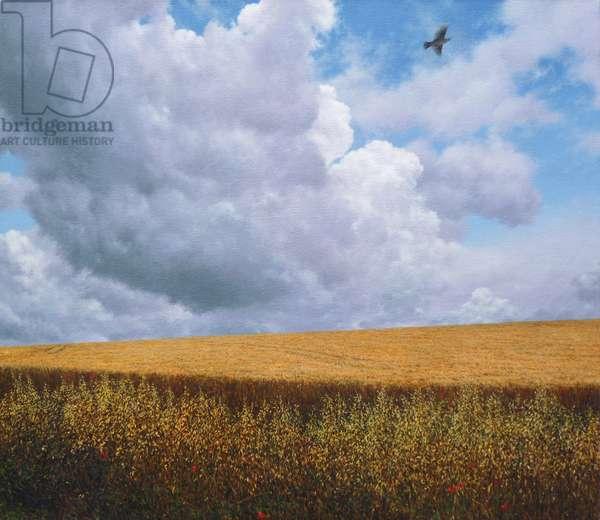 Skylark, 2009 (acrylic)