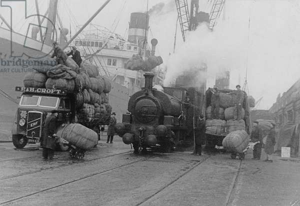 Unloading South African wool in the West India Docks assisted by PLA rail facilities, London (b/w photo)