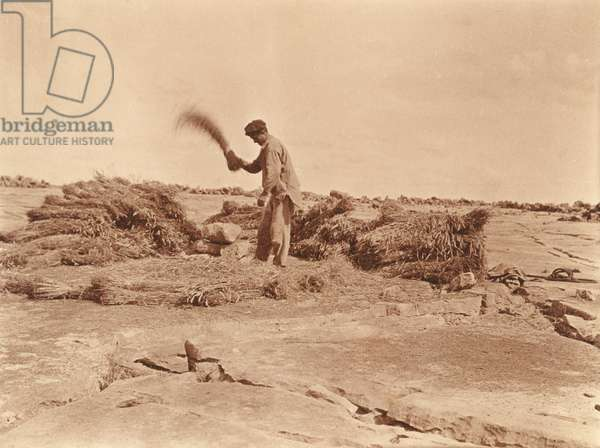 Thresher at work, late 19th century (b/w photo)