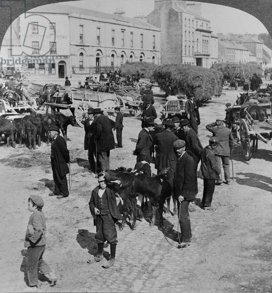 Market, Eyre Square, Galway, Ireland, c.1900 (gelatin silver print)
