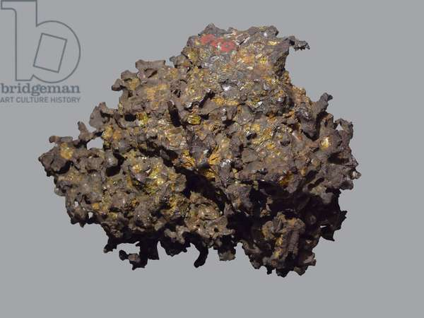 Mixed meteorite (Pallasite). Tombee in Krasnoiarsk (Russia) in 1749. National Museum of Natural History, Paris.