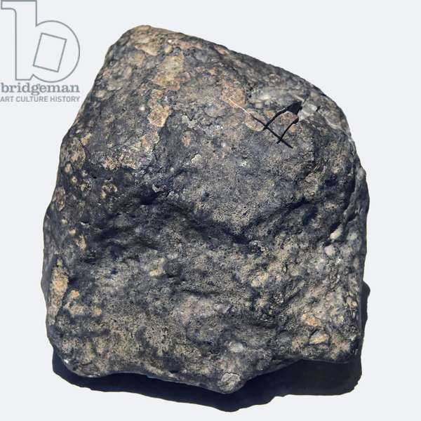 Ordinary chondrite (L/LL5). Toimbee in Ukraine in 1866. National Museum of Natural History, Paris.