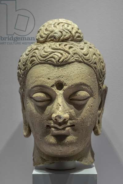 Buddha's head. Afghanistan, 3rd and 4th. Stucco.