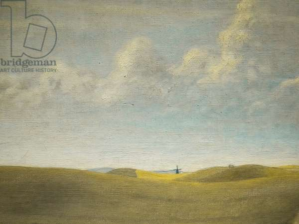Landscape (view of Refsnaes), detail, 1900 (oil on canvas) (detail of 6333820)