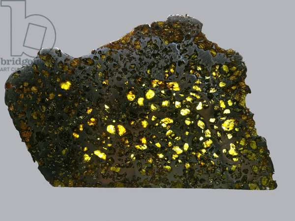 Mixed meteorite (Pallasite). Find Esquel (Argentina) in 1951. National Museum of Natural History, Paris.