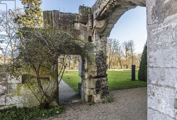 Gothic art: view of ruins on the site of the Cistercian monastery of Royaumont (abbey) 1228-1235 Asnieres-sur-Oise (Asnieres sur Oise), Val-d'Oise (Val d'Oise)