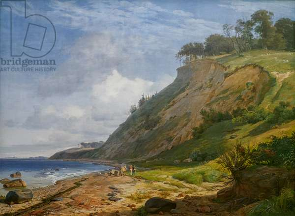A Danish Coast, View from Kitnæs on Roskilde Fjord, Zealand, 1843 (oil on canvas)