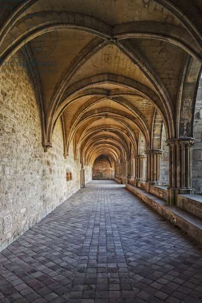 Gothic Art: Laterale of the cloister of the Cistercian monastery of Royaumont (abbey) 1228-1235 Asnieres-sur-Oise (Asnieres sur Oise), Val-d'Oise (Val d'Oise)