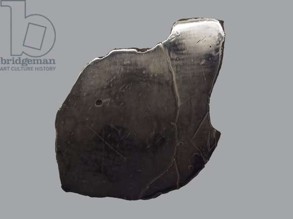 Iron meteorite (IIAB). Find a Coahuila (Mexico) in 1837. National Museum of Natural History, Paris.