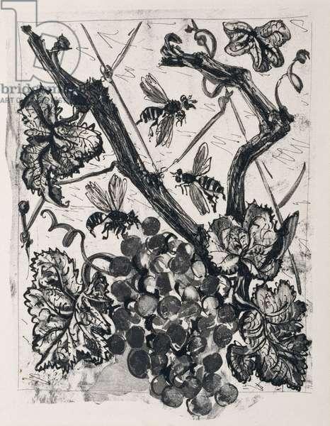 The Wasp, 1936 (sugar-lift aquatint)
