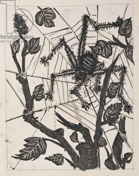 The Spider, 1936 (sugar-lift aquatint)