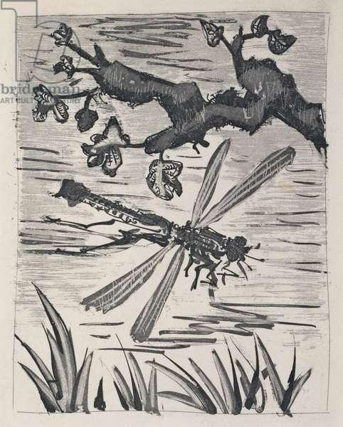 The Dragonfly, 1936 (sugar-lift aquatint)