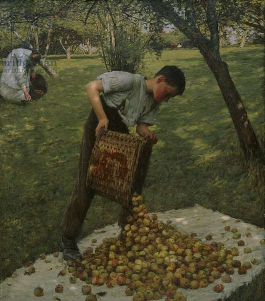 Cider Apples, 1899 (oil on canvas)