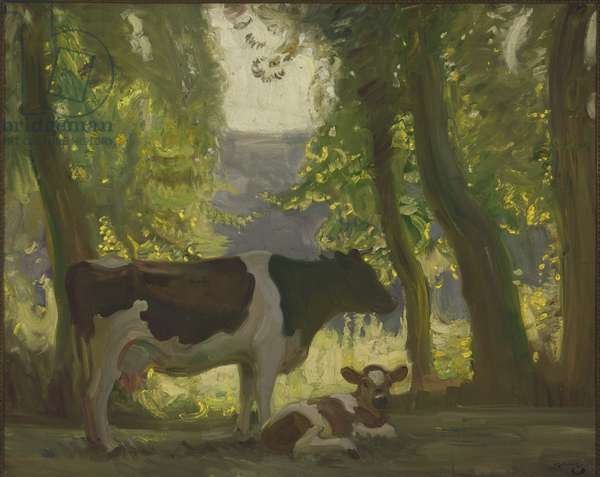 Cow (oil on canvas)