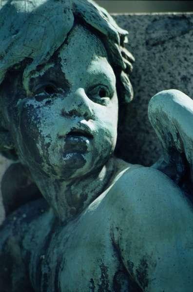 Angel (photo)