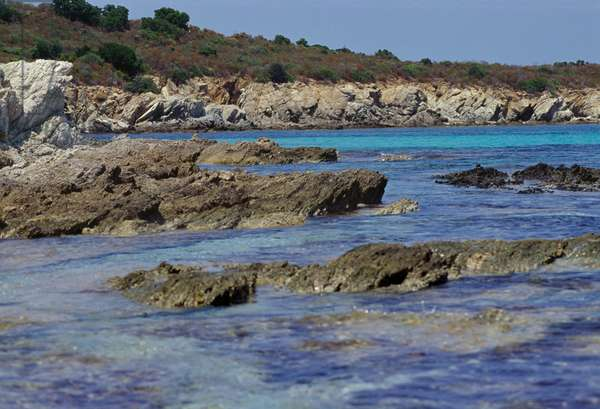 Land and sea, Corsica (photo)