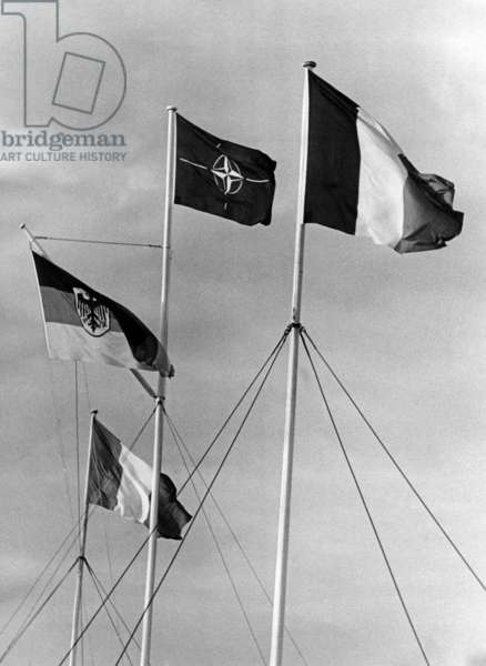 Flags of NATO and its members, 1958/1959 (b/w photo)