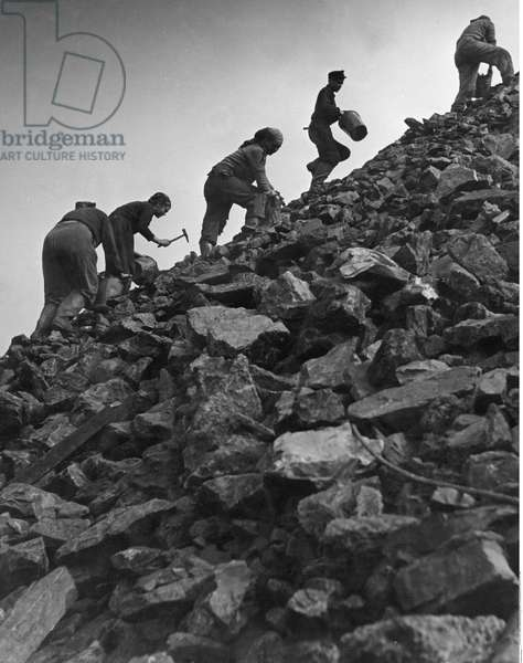 People stealing coals from stockpiles in the Ruhr due to postwar fuel shortages, between 1945-49, (b/w photo)