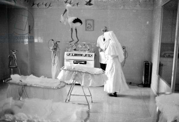 The obstetrics ward of a hospital in Madrid, 1963 (b/w photo)