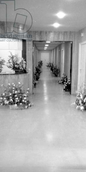 Flowers in the corridor of a hospital, 1963 (b/w photo)