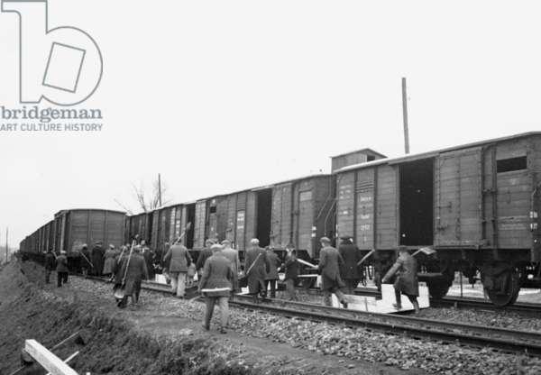 Soviet grain delivery to Germany, 1939 (b/w photo)