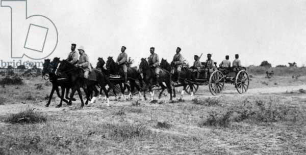 German soldiers in Cameroon, August 1914-February 1916  (b/w photo)