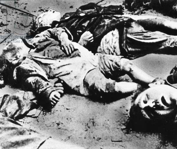 Children's bodies after air raids on Dresden in 1945 (b/w photo)