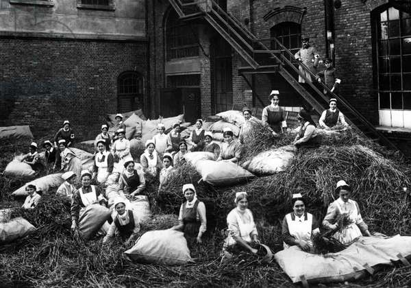 Straw beds for wounded soldiers, 1914 (b/w photo)