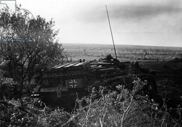 German assault gun in the southern section of the Eastern front, May 1942