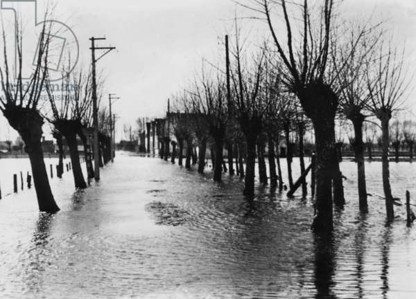 Flooded area behind the Atlantic Wall, 1944 (b/w photo)