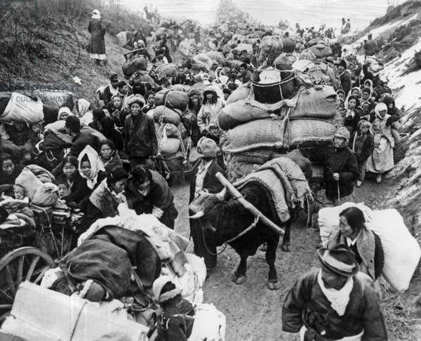 Exodus of people in north Korea escaping communist advance 1950 photo NARA