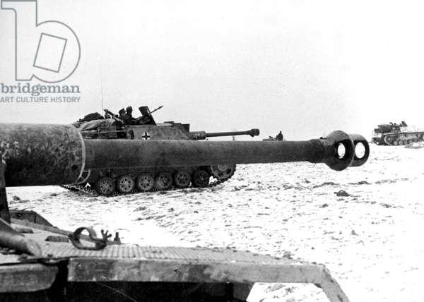 Battle of Stalingrad, september 1942 - february 1943 : advance of german tanks towards Stalingrad november 1942