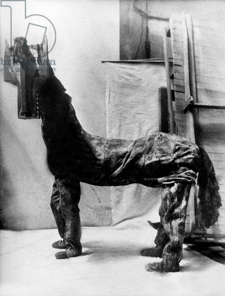 Horse costume by Pablo Picasso for ballet Parade in 1917 (music by Erik Satie, scenario by Jean Cocteau, choregraphy by Leonide Massine)