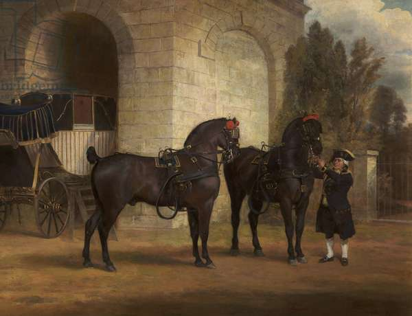 Two Black Coach Horses with a Coachman, 1791 (oil on canvas)