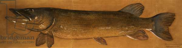 Pike (oil on canvas)