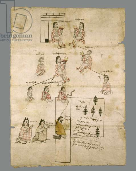 Page of Aztec Land Record, c.1575 (ink on paper)