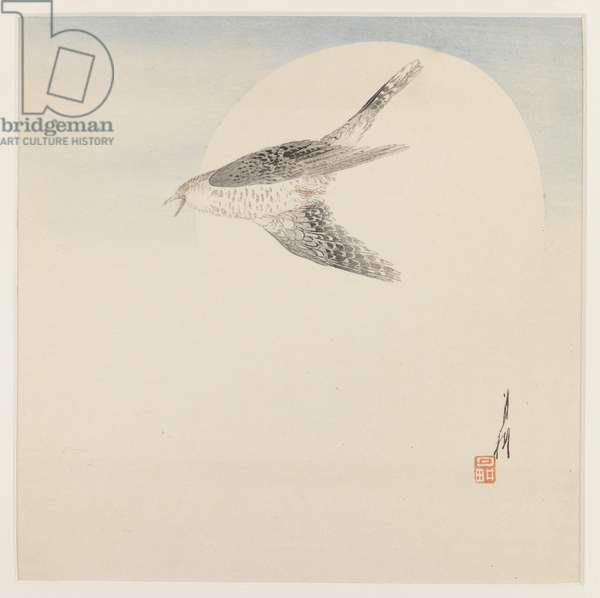 Nightingale Flying by Moon, c.1890-1910 (woodblock colour print)