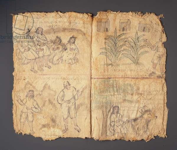 Techialoyan Codex, Coyotepec Coyonazco, Mexico (pigment & ink on paper)