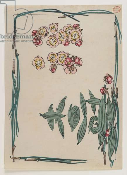 Cherry Blossoms with Pine Needle Border from the Series Hana Kurabe, c.1880 (woodblock colour print)