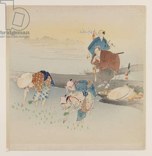 Man and Woman Planting Rice, c.1890-1910 (woodblock colour print)