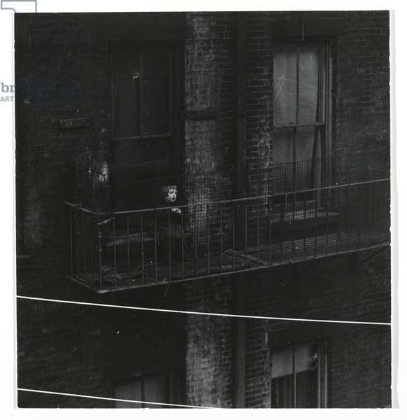 Untitled (Tenement, Child on Fire Escape) (gelatin silver print)