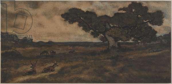 Bucks Near a Tree (w/c on paper)