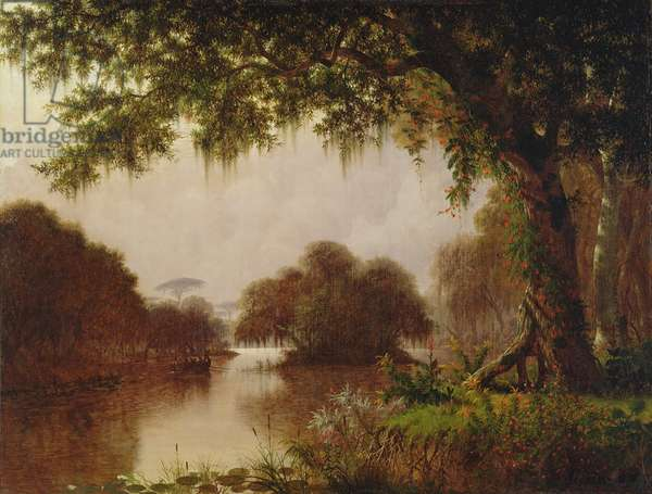 Swamp on the Mississippi, 1871 (oil on canvas)