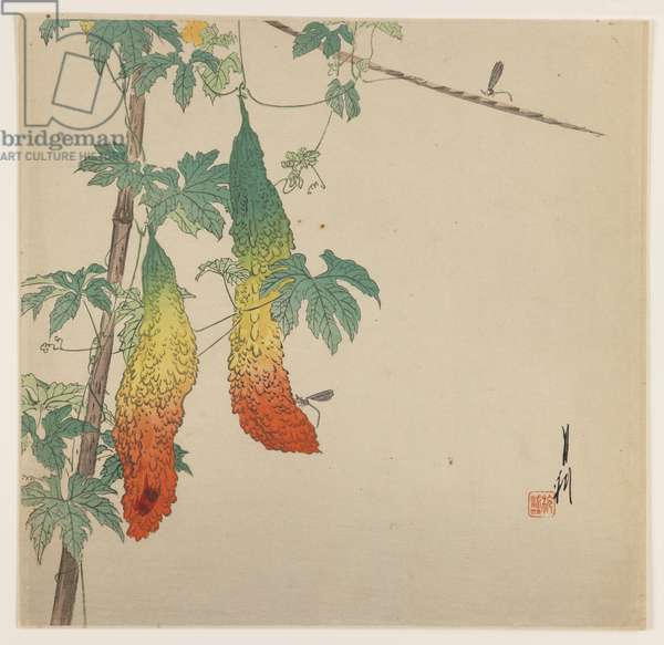 Gourds and Wasp, c.1890-1910 (woodblock colour print)