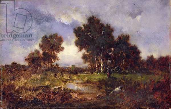 Trees and Pool, c.1845 (oil on panel)