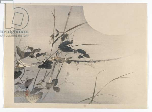 Moon and Foliage, album page from a Bird and Flower (Kacho) Book, c.1890-1900 (woodblock colour print with silver pigment)