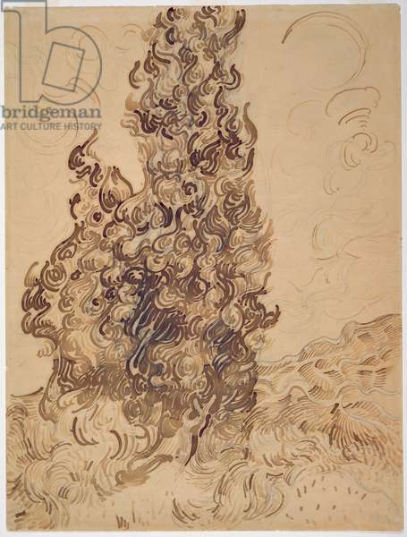 Cypresses, 1889 (reed pen, graphite, quill and brown and black ink on paper)